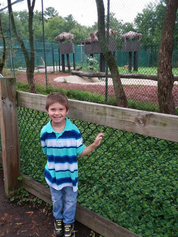 zoo field trip 2 elem